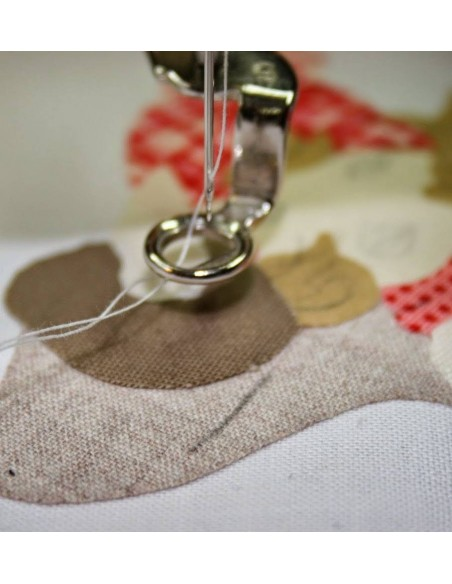 Sewing Machines Darning Foot